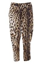 Eb 2321001  leopard5 small2