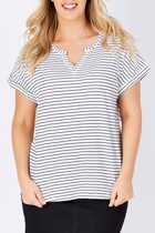 Birdk 455  stripe 002 small2