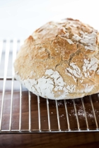 Stew nolan mad millie bread  010 copy small2